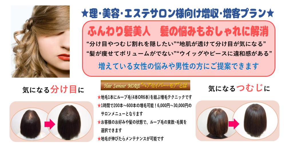 ヘアセイバー・MORE講習会【2019年3月12日(火)開催】~東京~